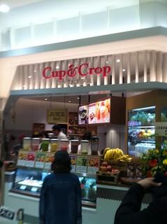 Cup&Crop1.jpg