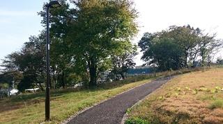 イオンモール八王子北20151101左入緑地公園�A.JPG