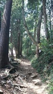 今熊山9.JPG