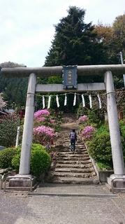 今熊神社4.JPG