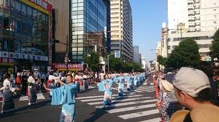 八王子まつり ギネス世界記録4.JPG