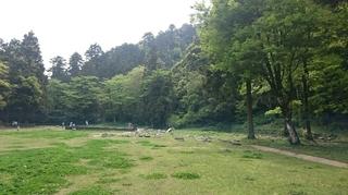 八王子城跡5.JPG