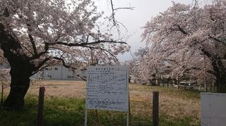 南八王子病院2.JPG