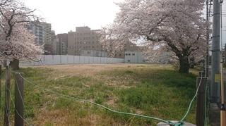 南八王子病院3.JPG