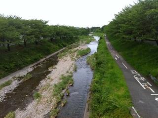 南浅川橋2.JPG