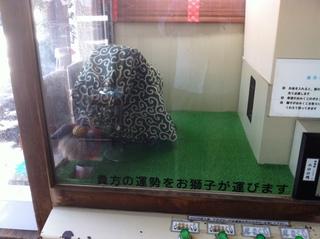 子安神社6.JPG