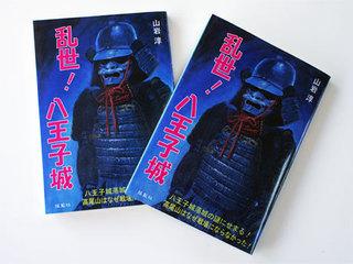 小説「乱世!八王子城」(揺籃社).jpg