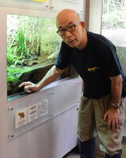水族園内に展示されている「東京めだか」.jpg