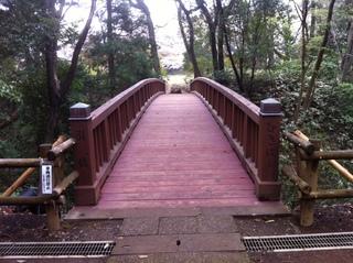 滝山公園11.JPG