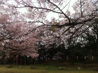 滝山公園13.JPG