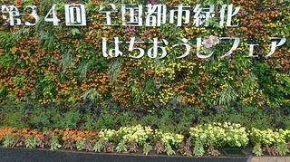 第34回全国都市緑化はちおうじフェア1.JPG