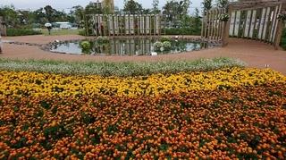 第34回全国都市緑化はちおうじフェア3.JPG