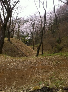 都立滝山公園21.JPG