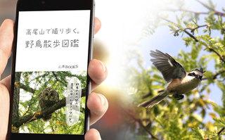 高尾山で撮り歩く。野鳥散歩図鑑.jpg