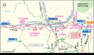 高尾梅郷梅まつり 地図.png
