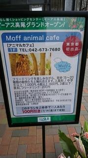 Moff animal cafe イーアス高尾店1.JPG