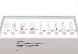 TAKAO 599 MUSEUM4.jpg